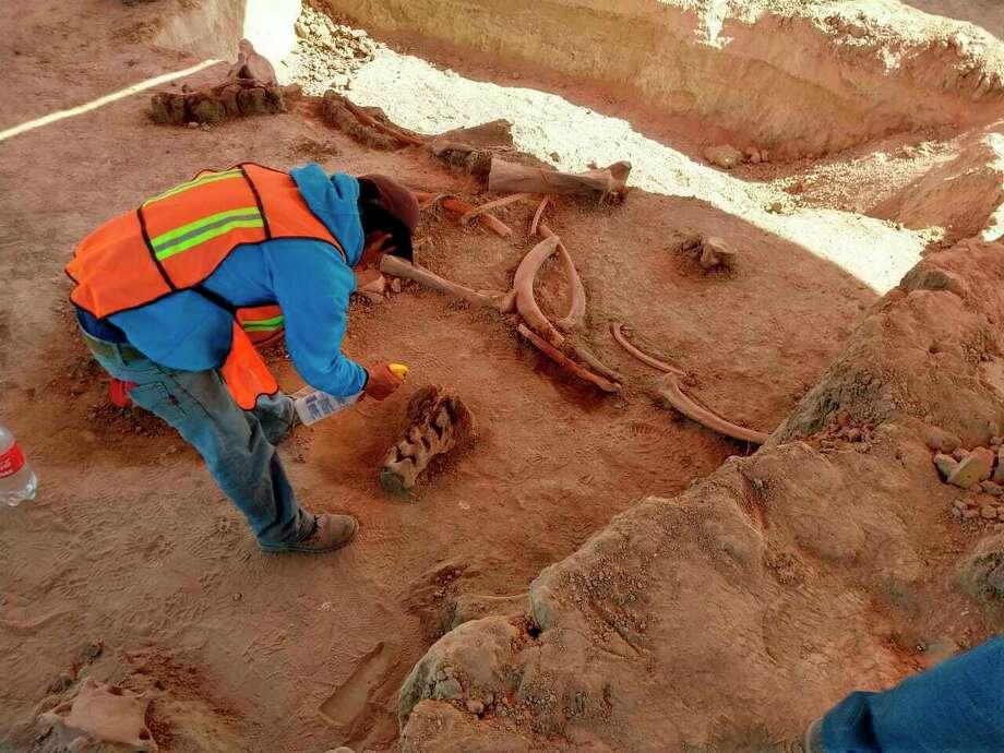 Una persona trabaja en el lugar donde se encontraron restos de mamuts, cerca de la base militar de Santa Lucía, al norte de la Ciudad de México. La foto no fechada fue suministrada por el Instituto Nacional de Antropología e Historia de México. Photo: INAH /Associated Press / INAH