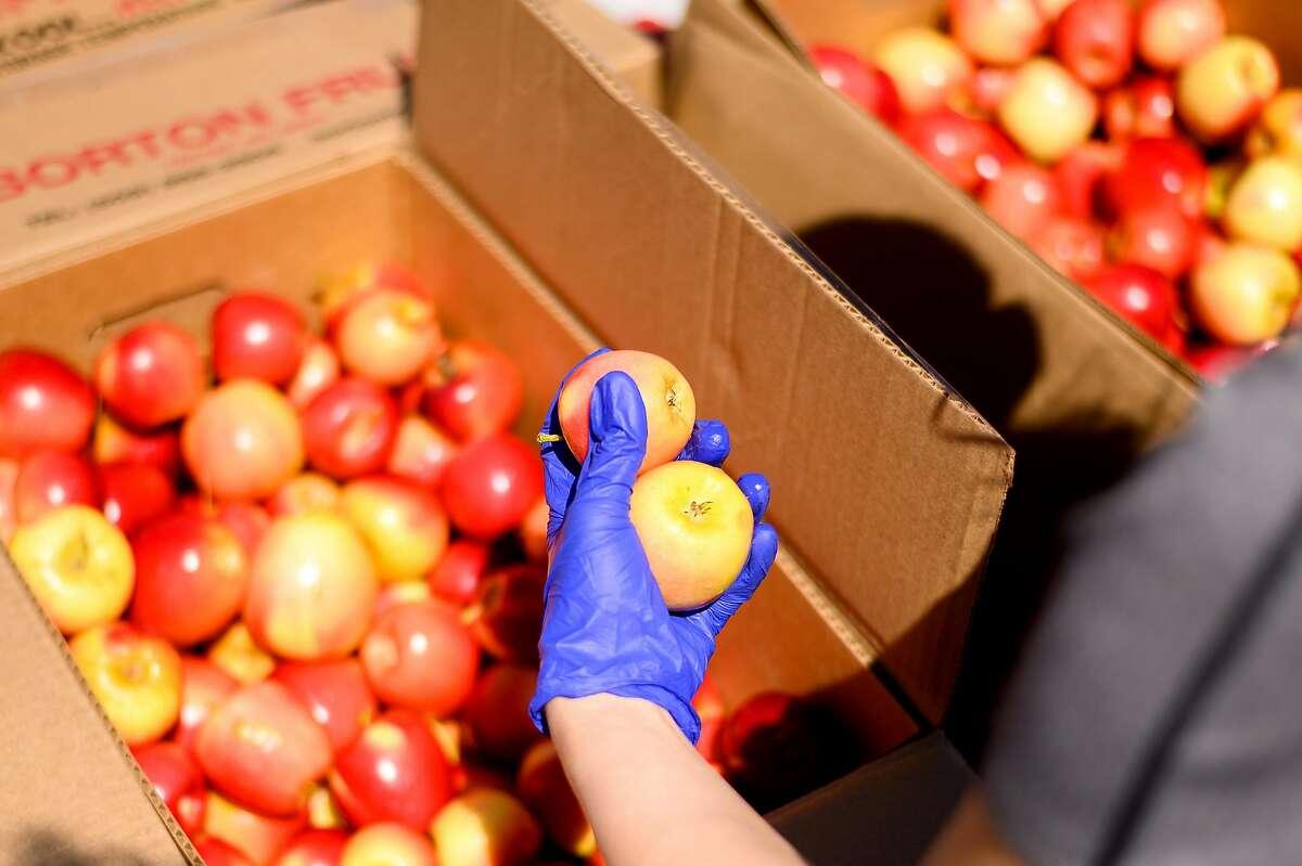 A San Francisco-Marin Food Bank volunteer sorts apples on Saturday, May 23, 2020, in San Francisco.