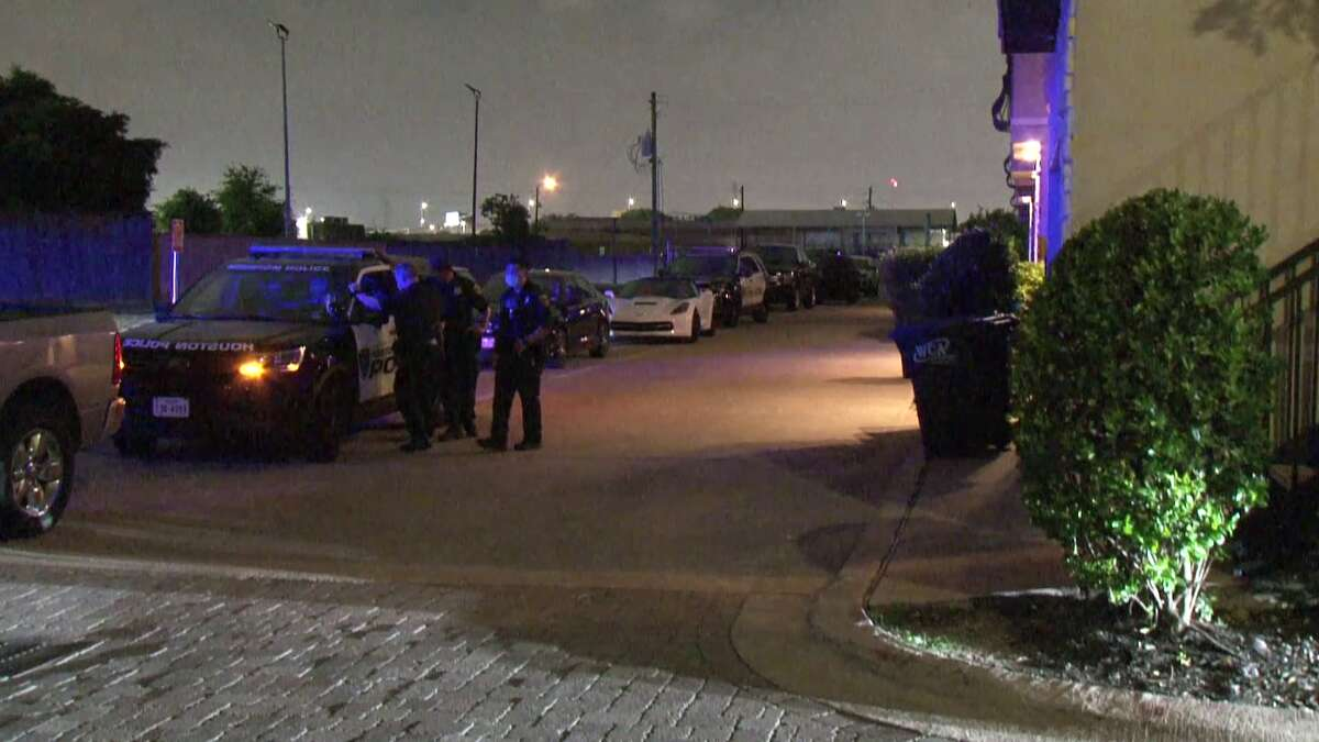 A woman allegedly shot and killed her common-law husband, possibly in self-defense, just after midnight Sunday at their west Houston home, police said.