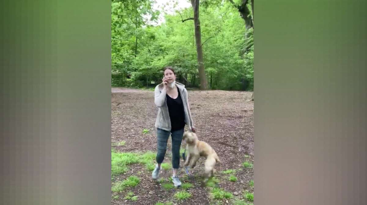 Amy Cooper called the police on Christian Cooper after he asked her to leash her dog, Henry, a 2-year-old cocker spaniel. (Christian Cooper)