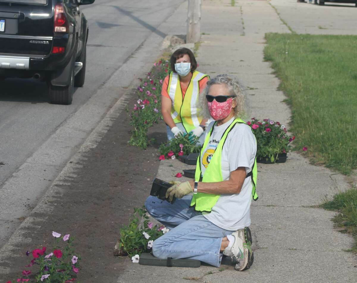 A pair of volunteers plant flowers for Onekama's Petunia Parade.