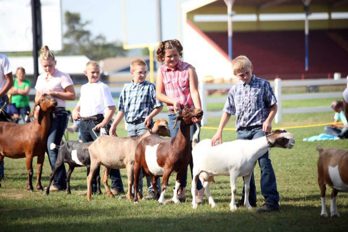 In this file photo, 4H'ers show their goats during last year's fair festivities. Events for this year have been cancelled due to the coronavirus.