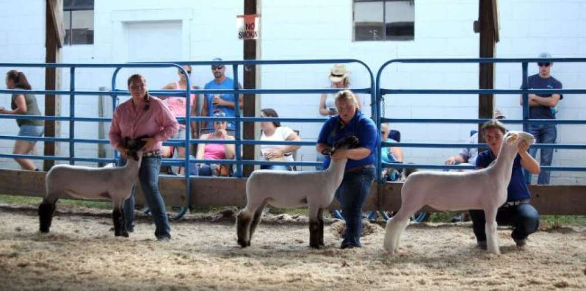 This year's edition of the Mecosta County Free Fair has been cancelled. These are moments from the last couple of years.