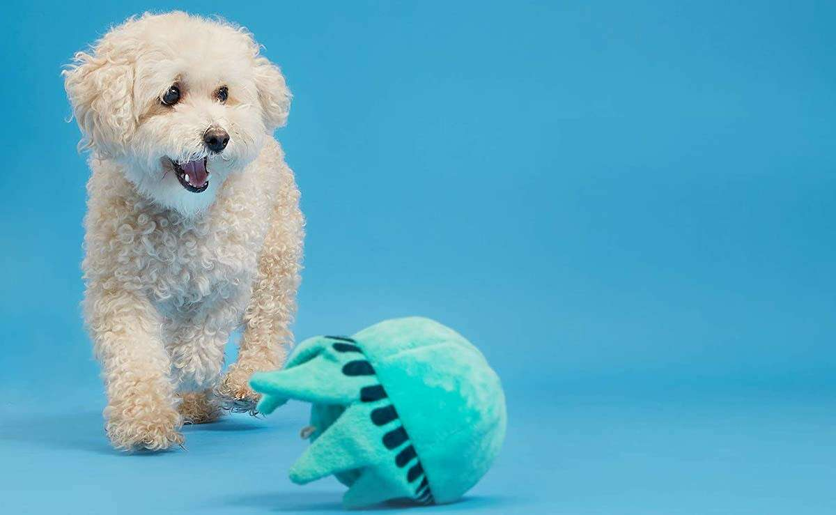 While cats regularly turn their noses up at plenty, dogs are always excited for gifts, with their always-happy energy. Not to pit them against one another, but dogs are easy to please. If you're looking for toys to get your dog to make their tail wag, you can snag one for less than $15. And if you're fully a cat person, check out these toys for your fickle feline for under $20.