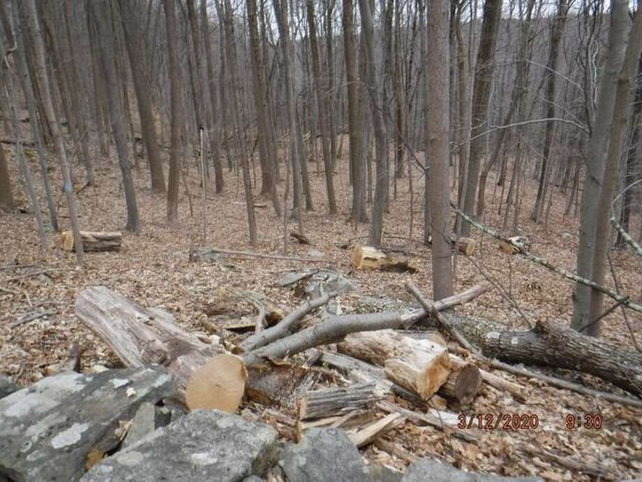 Conservation Commission members say dumping of this sort is all too common in town open spaces. Photo: Contributed Photo