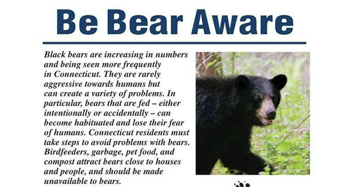 A poster from the DEEP informing the public about bear safety. If you encounter a bear while in your yard or hiking, make your presence known by yelling or making other loud noises. Never attempt to get closer to a bear. If a bear does not retreat, slowly leave the area. If in your yard, go into your house, garage or other structure. If the bear persistently approaches, go on the offensive, shout, wave your arms, and throw sticks or rocks.