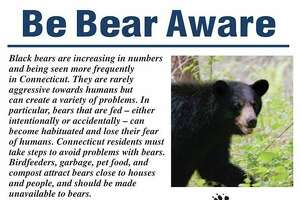 A poster informing the public about bear safety.