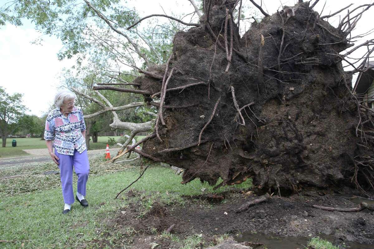 Inge Chambliss studies the uprooted oak tree in her front yard after storm damage in Kerrville on May 28, 2020. The tree luckily fell way from the 93 year old's house and out into Crestwood street.
