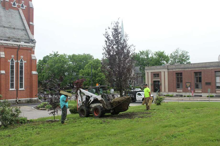 This Saturday a new copper beech tree will be planted between the Hotchkiss- Fyler House and St Francis Church. Photo: Contributed Photo