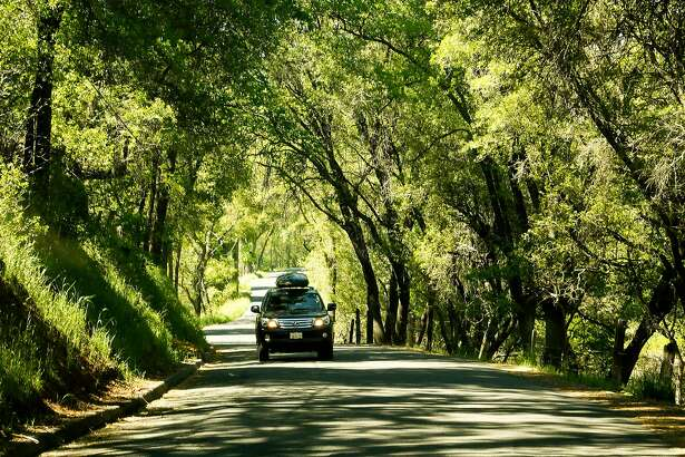Six Mile Road in the heart of Gold Country provides a scenic drive through a canopy of trees in the town of Murphys, Calif., on May 2, 2017. In the time of coronavirus, more people are looking at car trips as opposed to flying. (Mark Boster/Los Angeles Times/TNS)