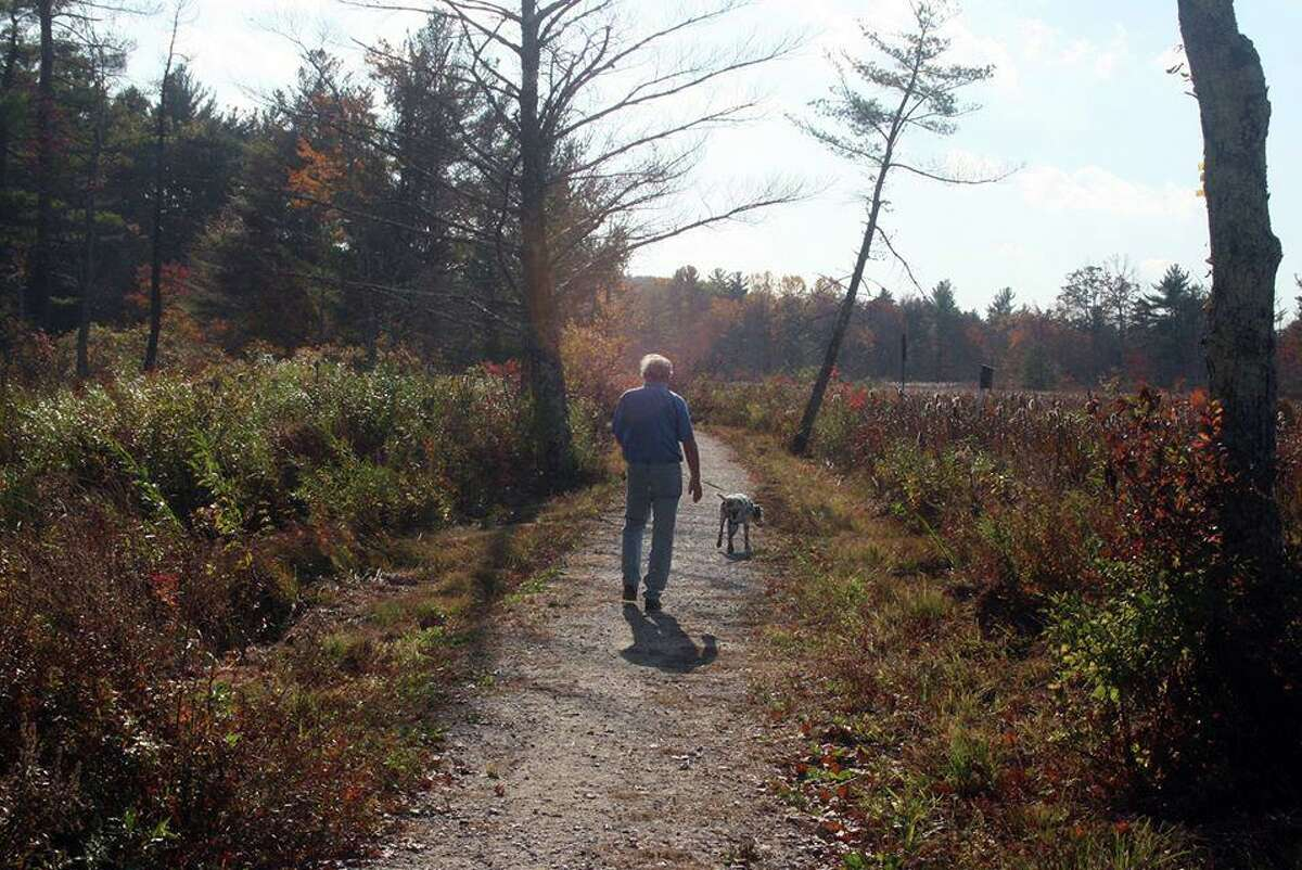 The Litchfield Community Greenway is making great progress with its trail, signage and accessibility for residents while keeping them off main roadways. Above, a visitor walks his dog on the greenway.