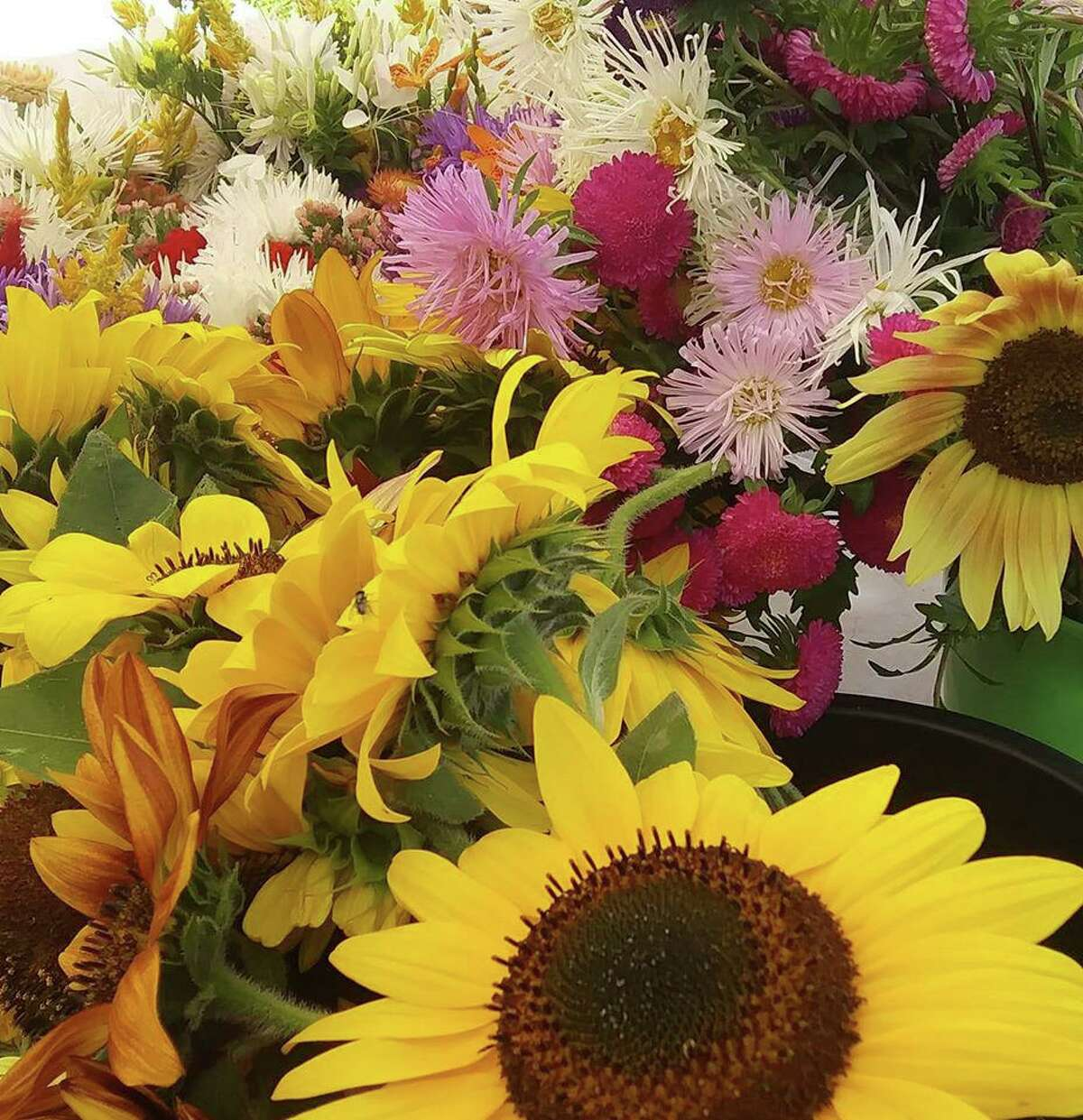 Flowers for sale at last year's farmers market.