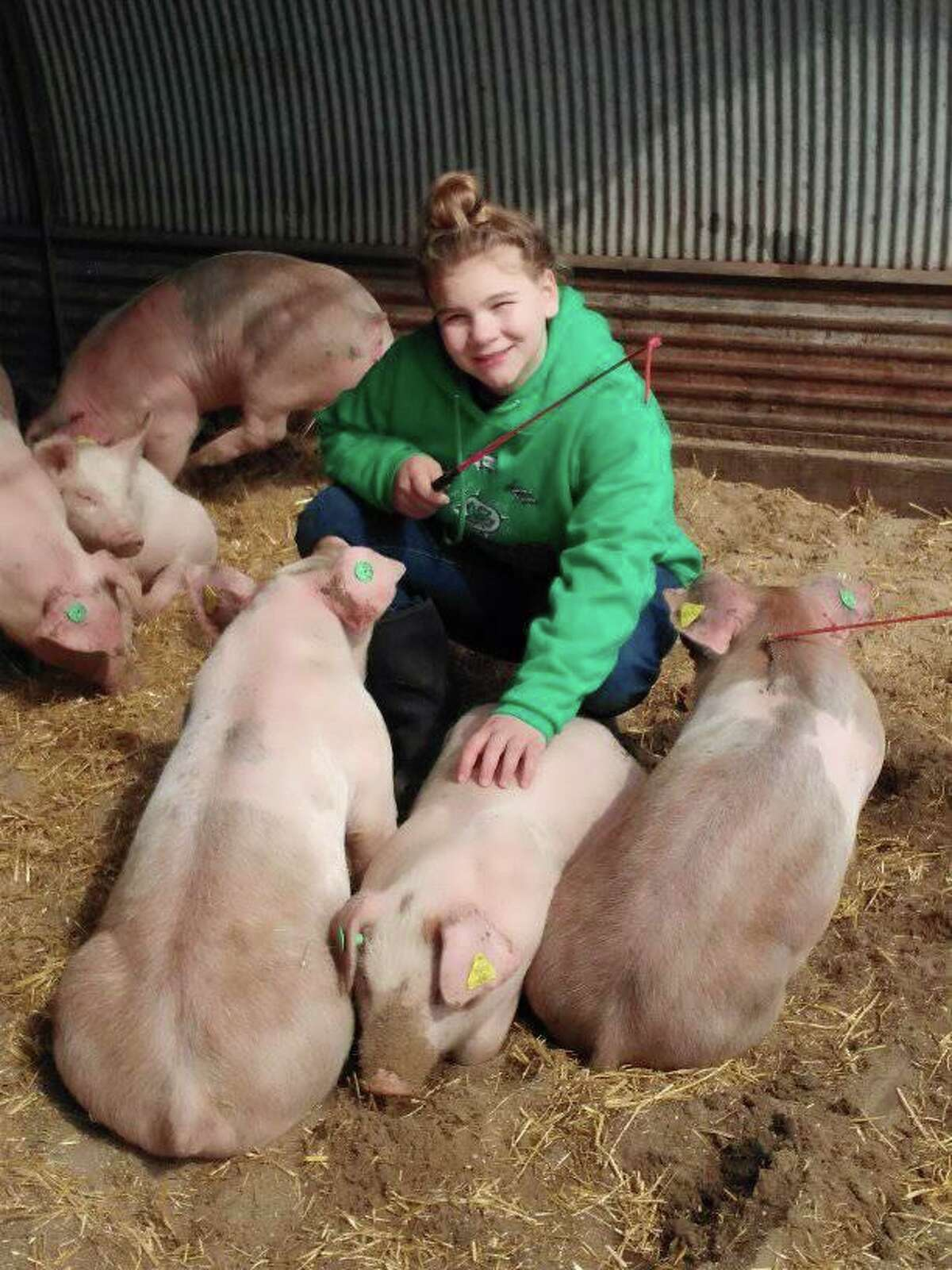 Emma Bristol with her pig Fade. Emma also shows dairy breed stock with Morley Stanwood Critter Club. She also sews and bakes.