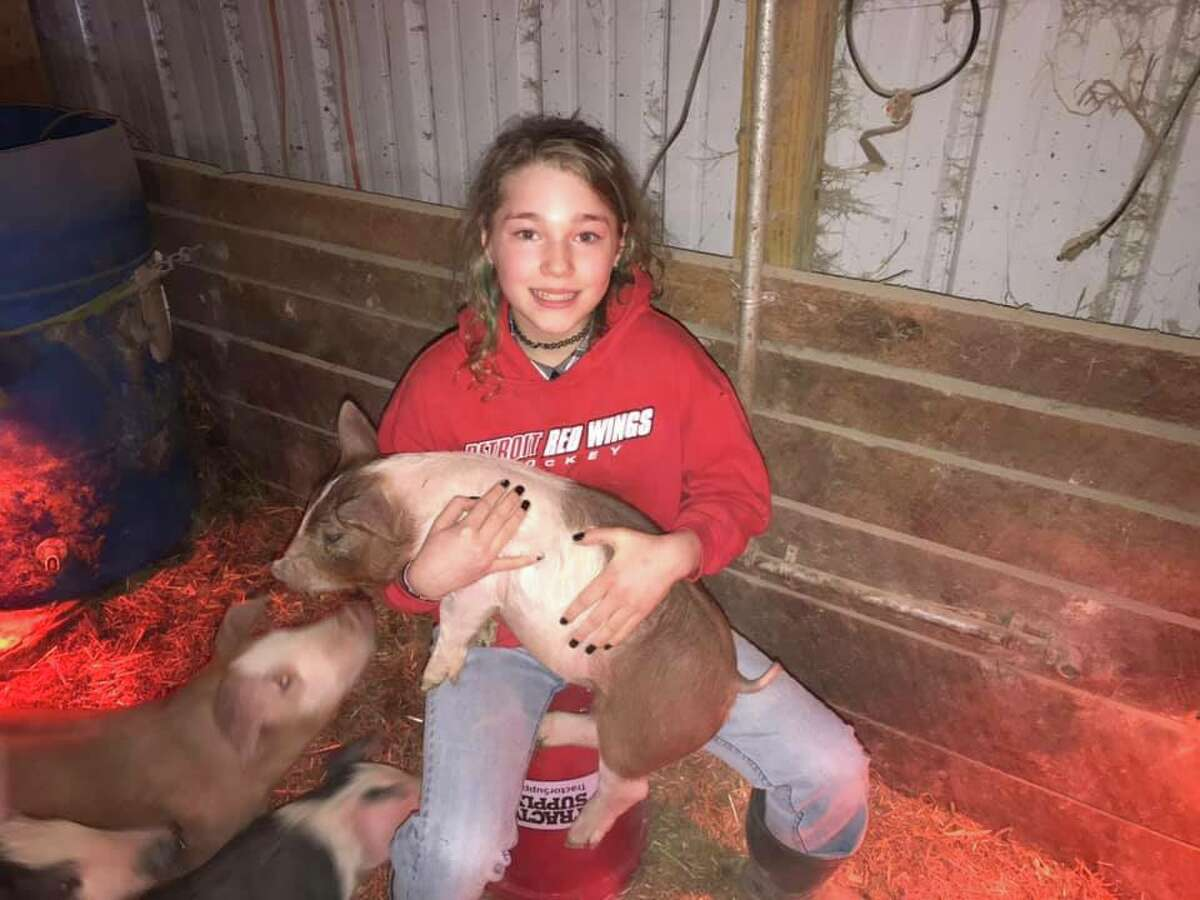 Rylie Vandawater shows pig from Tamarack Town and Country.