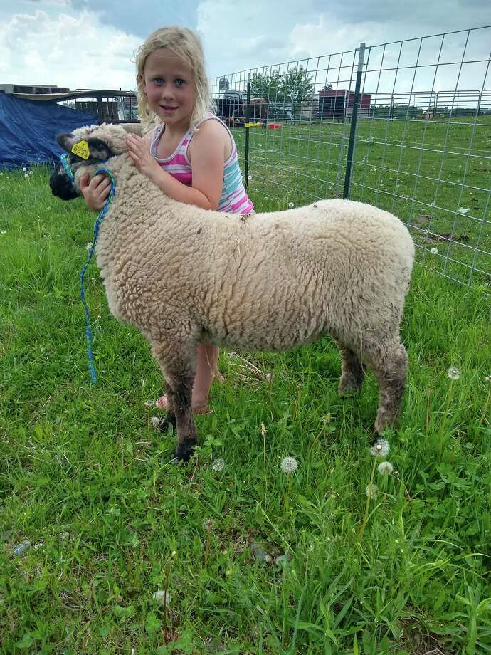 Brooklynn Rowe with her market lamb, Bubba. She's part of The Barnyard Bunch. Photo: Photo Submitted By Jordan Rowe