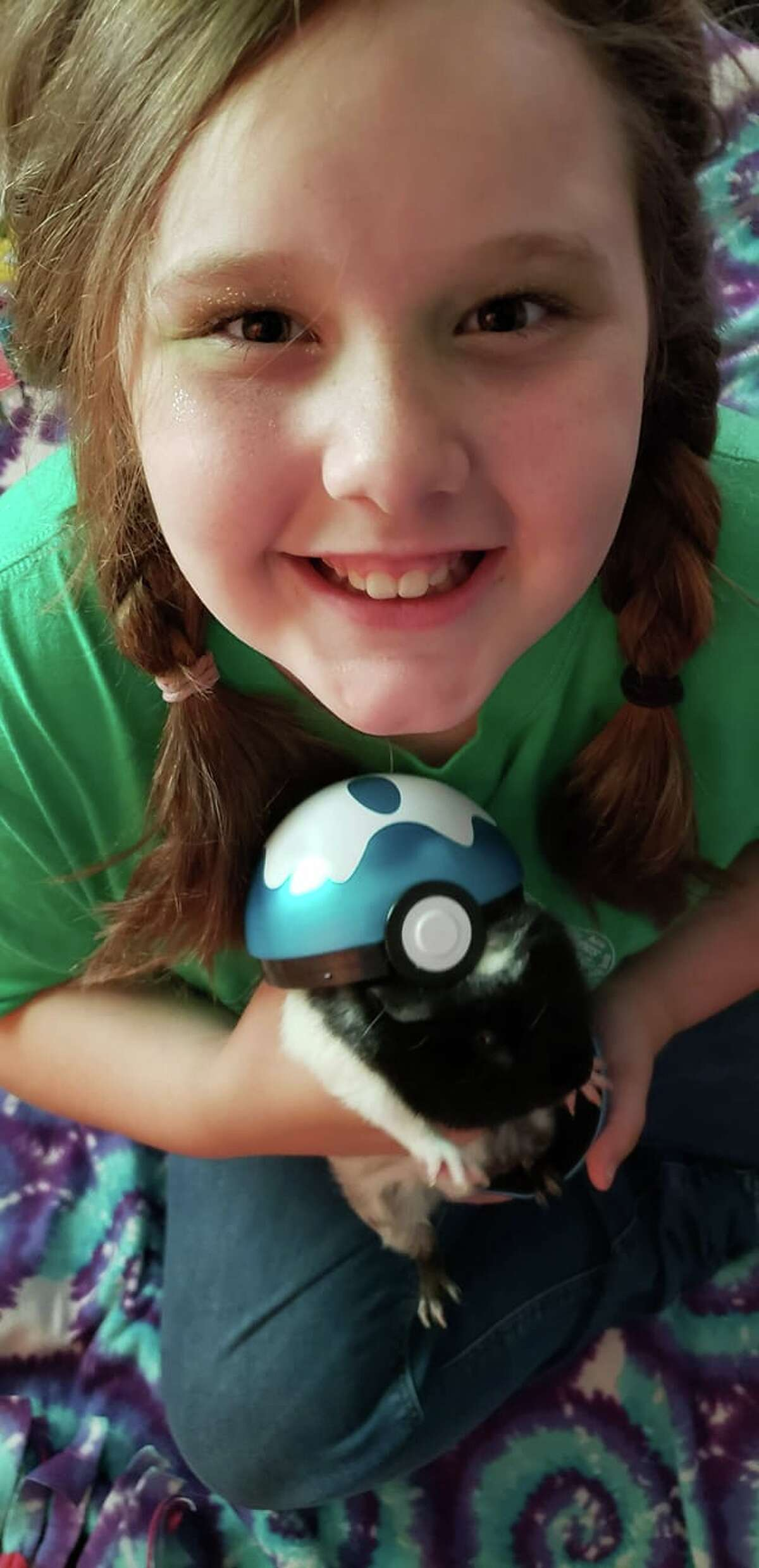 Chloey Oates with her Cavy Jack. This would've been her first year showing cavies with the Grant Center Pioneers.