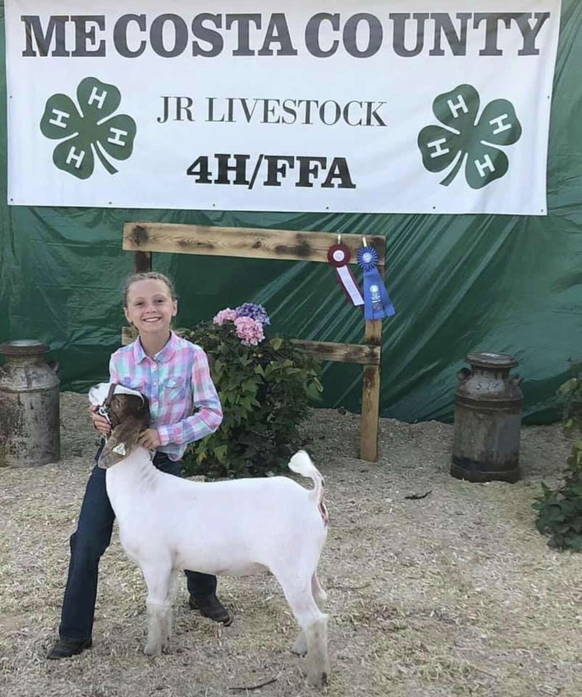 Maddie Harrison (age 10) with her goat Buddy. This is her 5th year in 4H she in the Pine Grove Club.