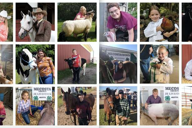 The Mecosta County Free Fair may have been cancelled, but here's your chance to still enjoy the 4H'ers and their livestock - virtually. Enjoy!