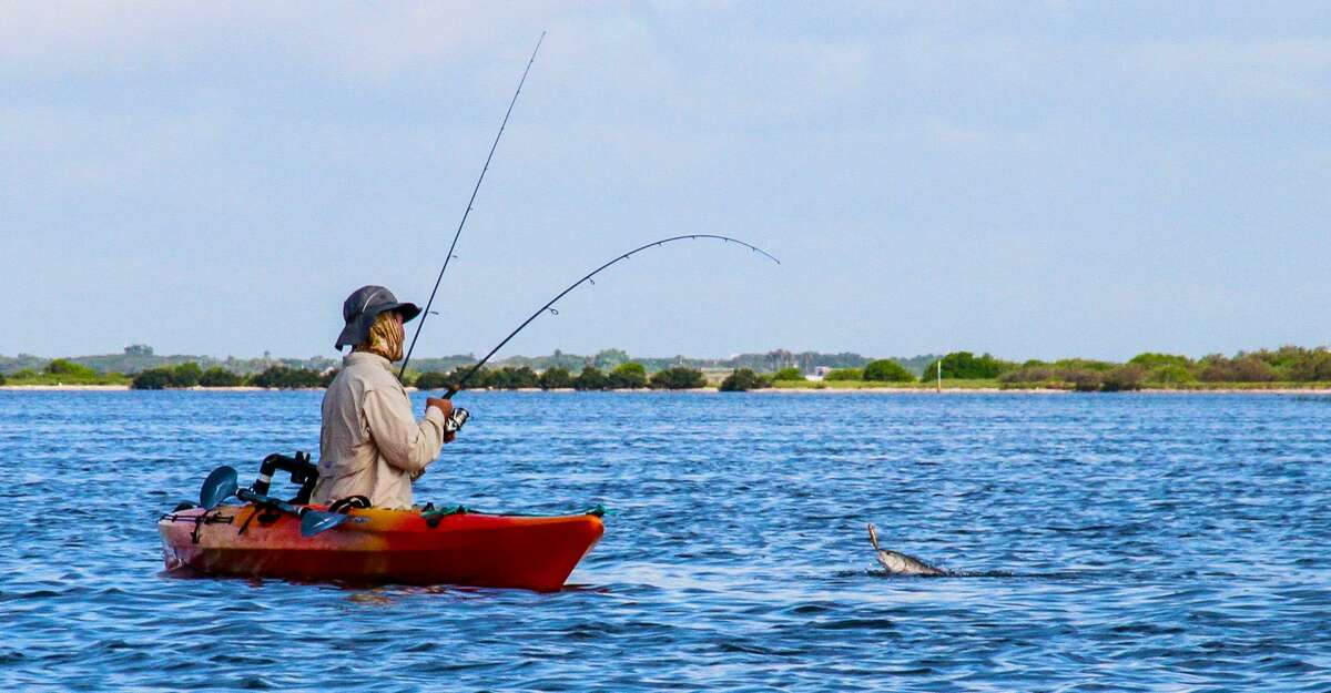 Paddlers using kayaks to quietly access shallow bay flats and back-bay lakes carpeted with submerged vegetation enjoy some of the summer's best topwater fishing along Texas' coast. Surface plugs imitating mullet or other forage fish can draw explosive strikes from redfish and, occasionally, large specked trout..