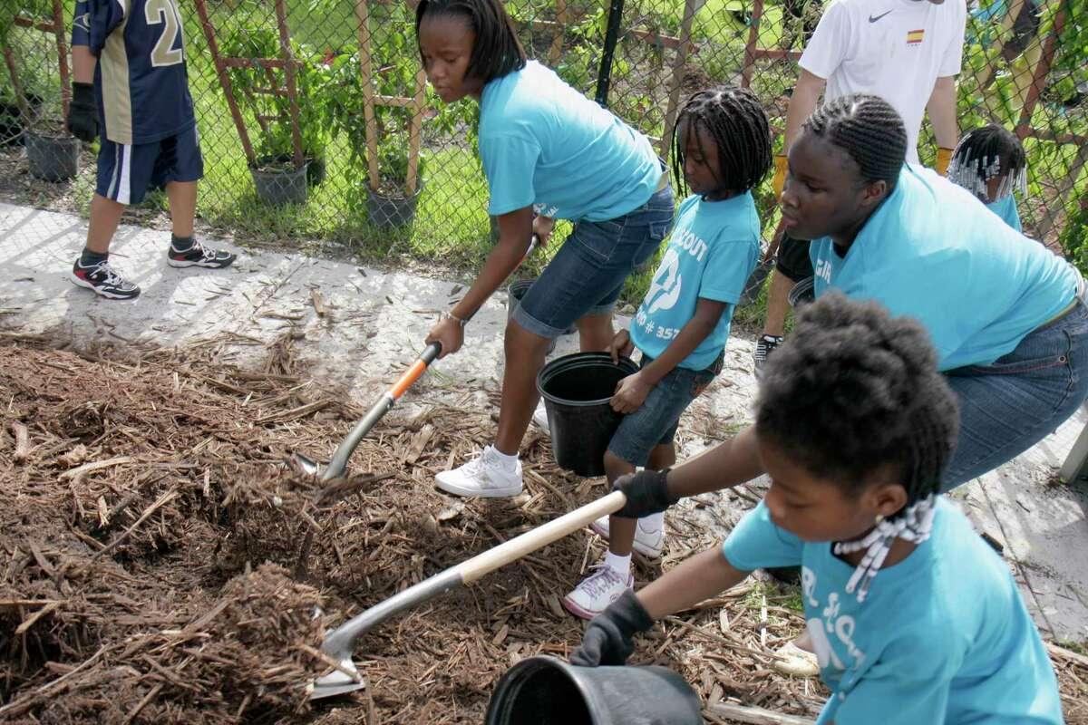 Girl Scout volunteers help mulch a community garden.