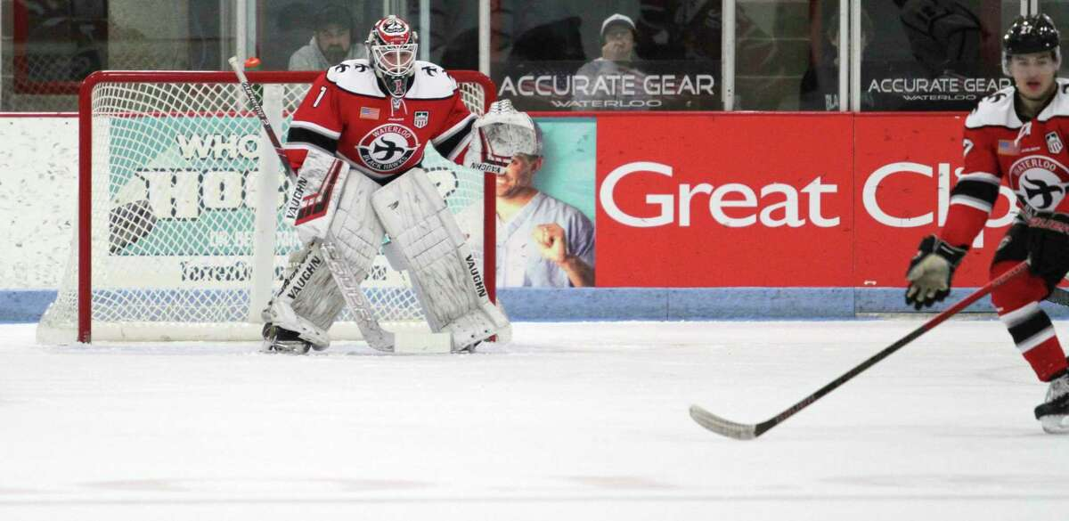 Logan Stein will be one of three goaltenders on the Ferris hockey roster this season. (Courtesy photo, Stephanie Lyn Photography)