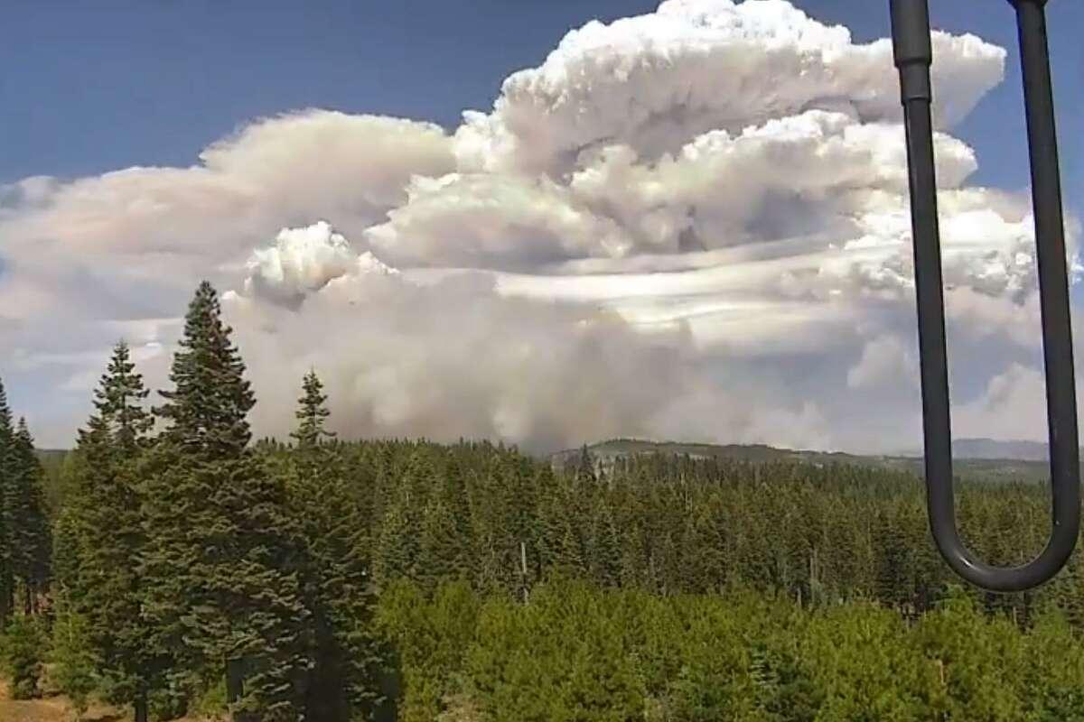 Photo of a pyrocumulonimbus cloud over the Dixie Fire.