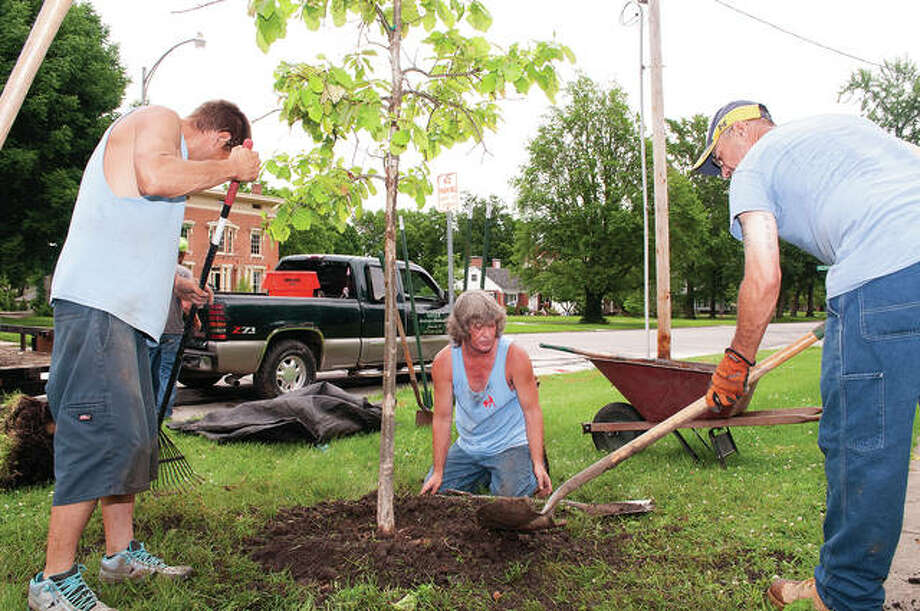 Chris Hartwick (center), owner of Chris Hartwick Landscaping, and employees Josh Perabeau (left) and Casey Hunter plant a tree Thursday along State Street. Ten trees were planted at several Jacksonville spots, including the Illinois School for the Deaf, Illinois College and the downtown square. The plantings are part of the Jacksonville Tree Project, an effort to line the streets of Jacksonville with a canopy of trees. Newly planted trees have a green ribbon tied to them. Photo: Darren Iozia | Journal-Courier