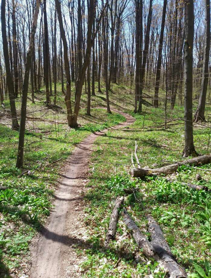 The St. Pierre Mountain Bike Trail offers a scenic, hilly ride that winds through the woods. (Kyle Kotecki/News Advocate)