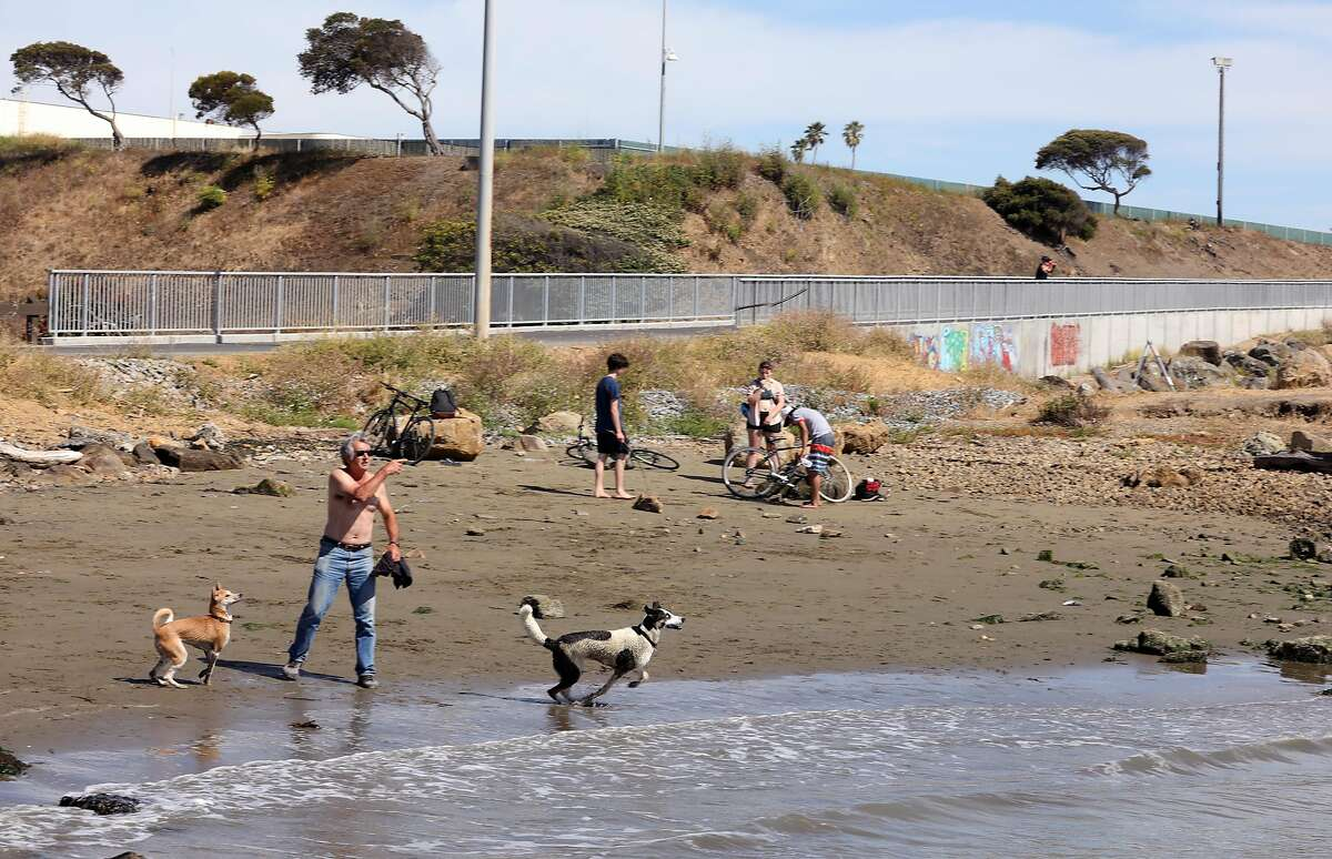 Small beach south of Buchanan dog beach where trail heads around the bluff of the new extension on the San Francisco Bay Trail seen on Tuesday, June 2, 2020, in Albany, Calif.