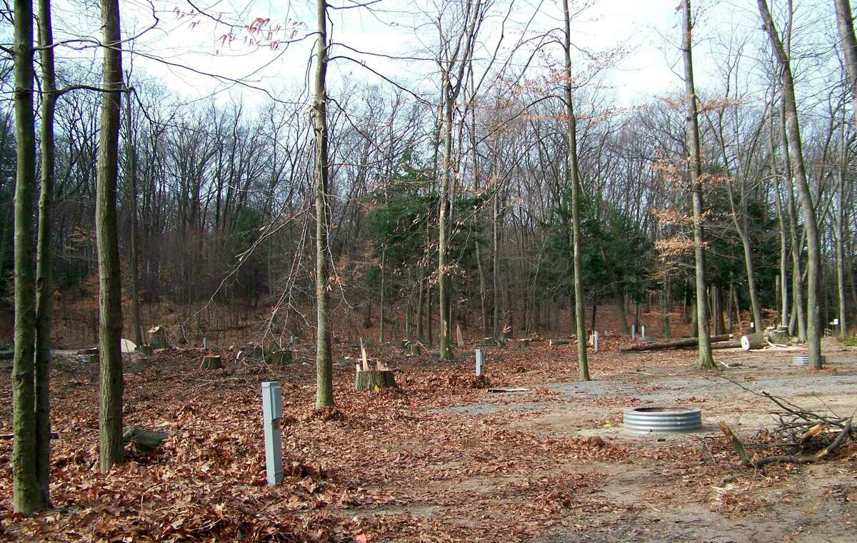 Oak wilt has had a devastating effect on parks across the state, including this campground at P.J. Hoffmaster State Park near Grand Haven. (Courtesy photo)