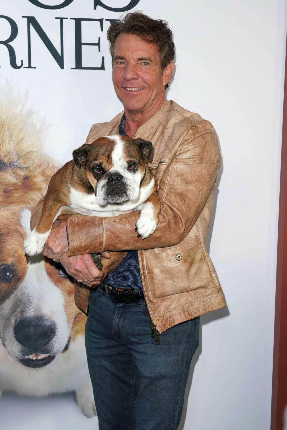 """Dennis Quaid attends the premiere of Universal Pictures' """"A Dog's Journey"""" at ArcLight Hollywood on May 09, 2019 in Hollywood, California."""