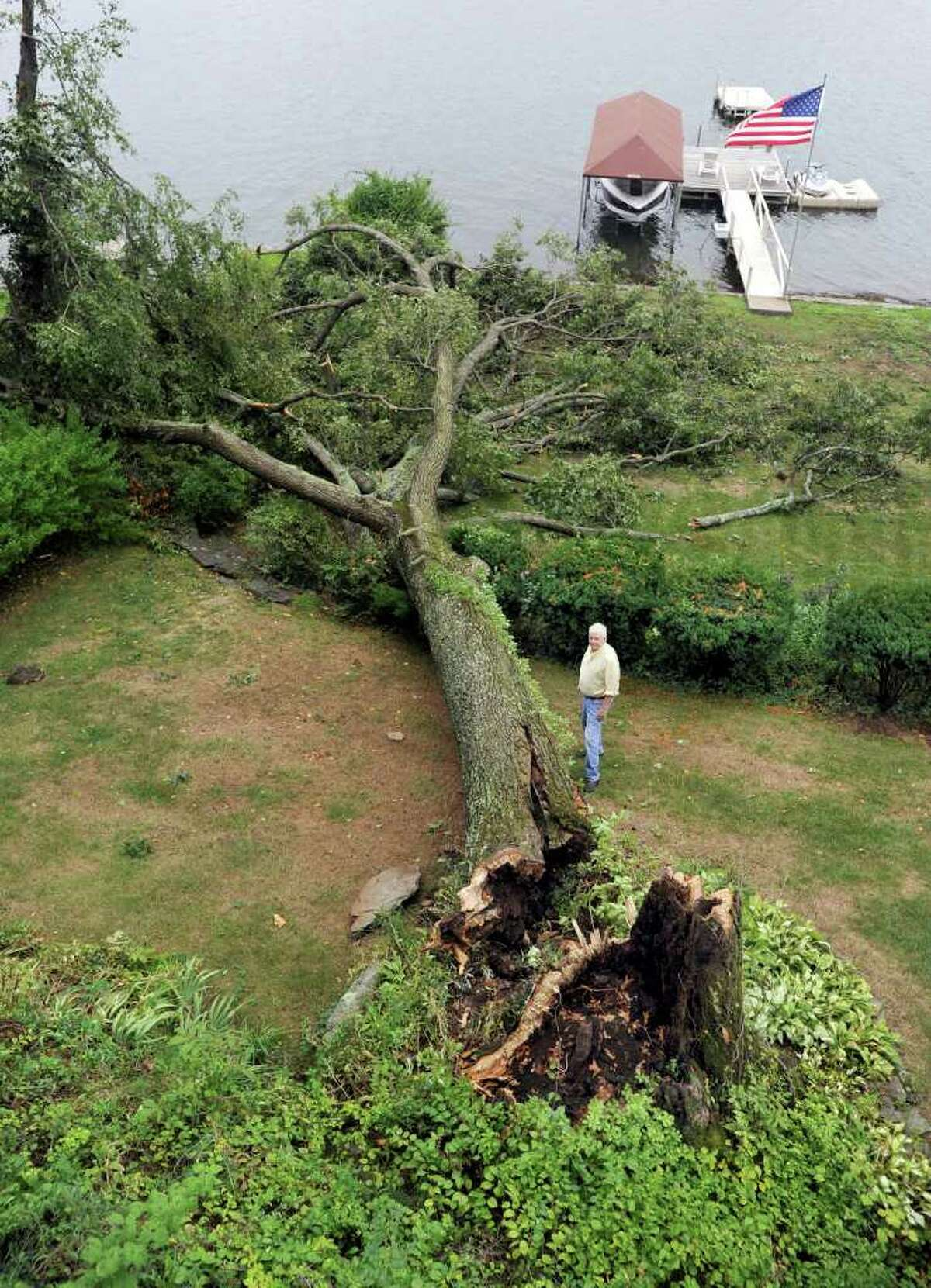 Kevin Carolan left his Danbury home about 6:30 p.m. Sunday to pick up some pizza, and soon got a call from his neighbor telling him the huge oak tree in his back yard had come crashing down. Sunday's heavy rains and the age of the tree - about 100 years old, were probably contributing factors. Luckily, the fallen tree missed the Carolan's boat and dock at Pleasant Acres.