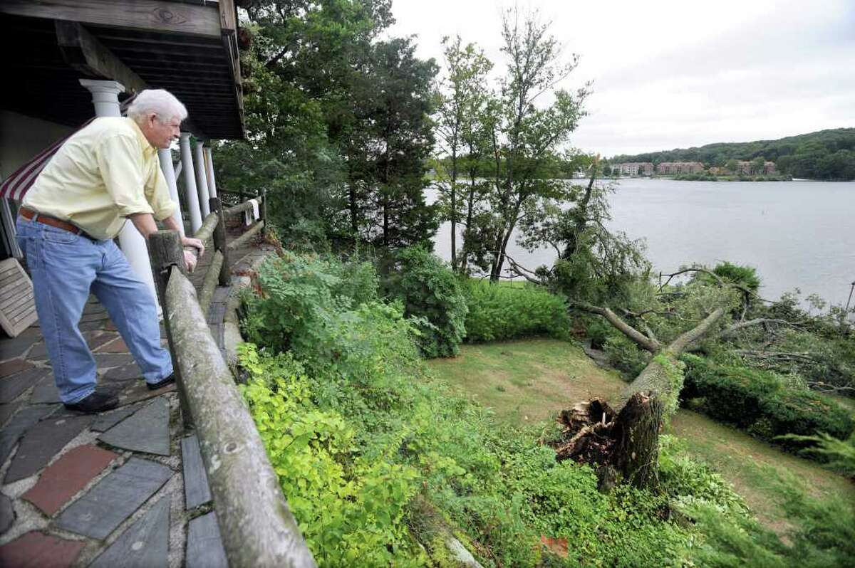 Kevin Carolan looks out from the Candlewood Lake home he shares with his wife, Dorrie, at a tree that fell Sunday night during heavey rains. Photo taken Sunday, August 23, 2010.