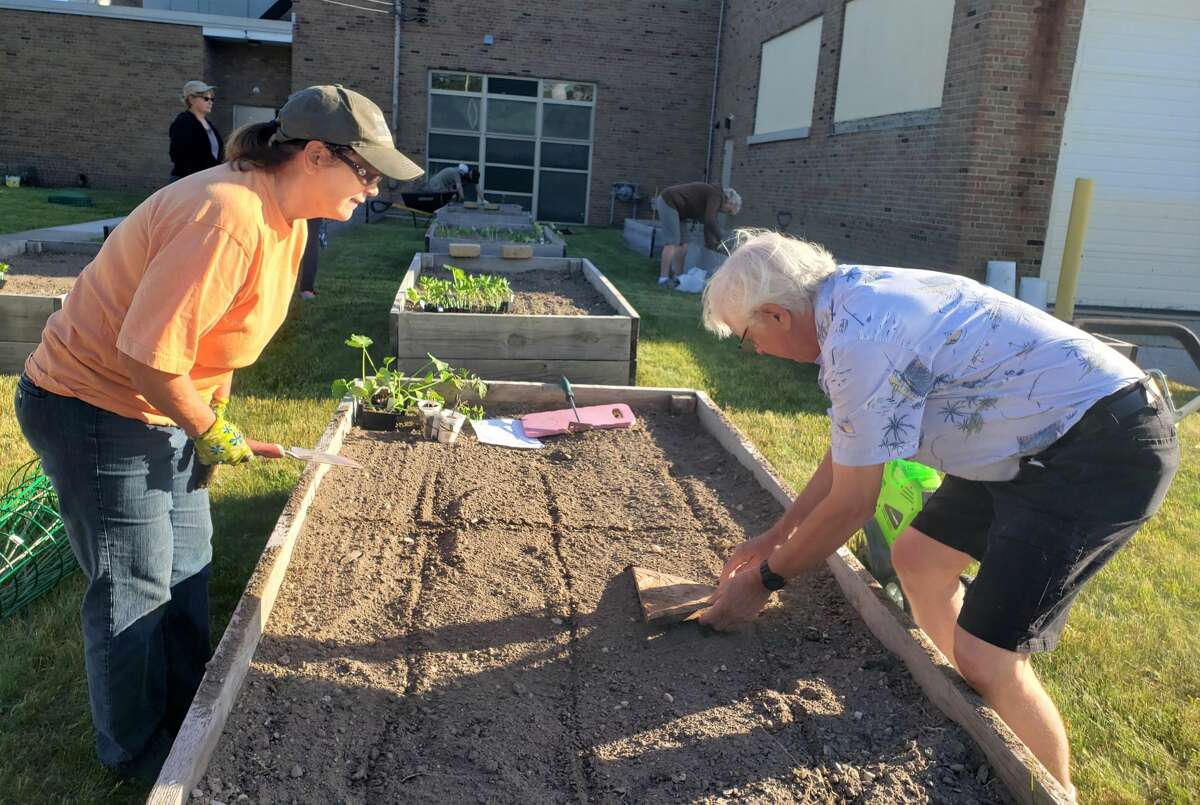 Kris Grove, a Spirit of the Woods Garden Club volunteer (left) and Mark Schwendner strategize on planting methods of seedlings at the Youth Armory Project's raised garden beds on First Street on Tuesday morning. The fruits and vegetables are being grown for Manistee County food pantries.