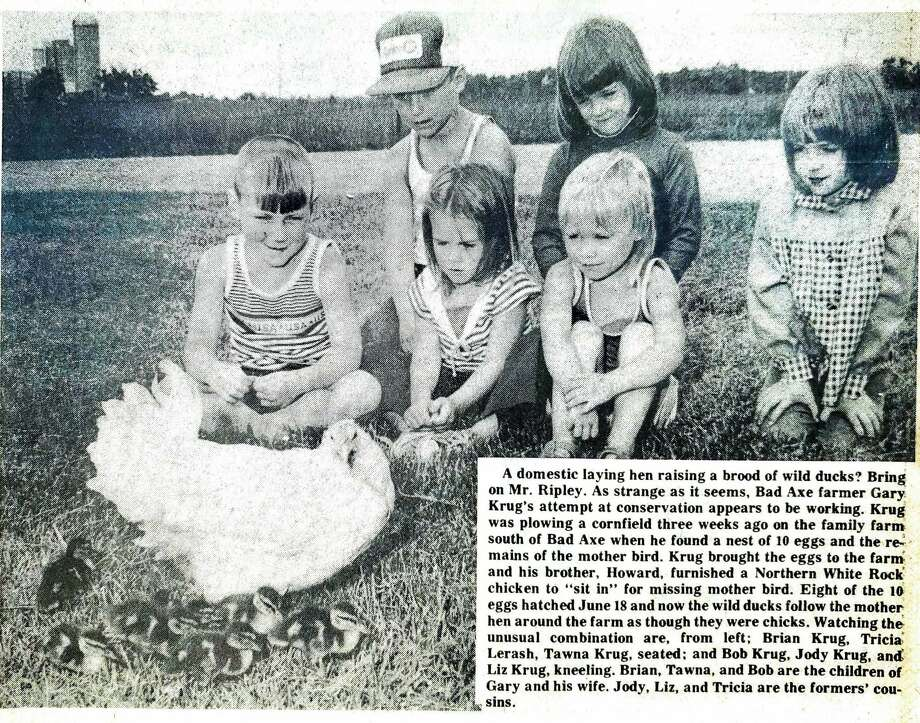 For this week's Tribune Throwback we take a look in the archives from June 1978. Photo: Tribune File Photo
