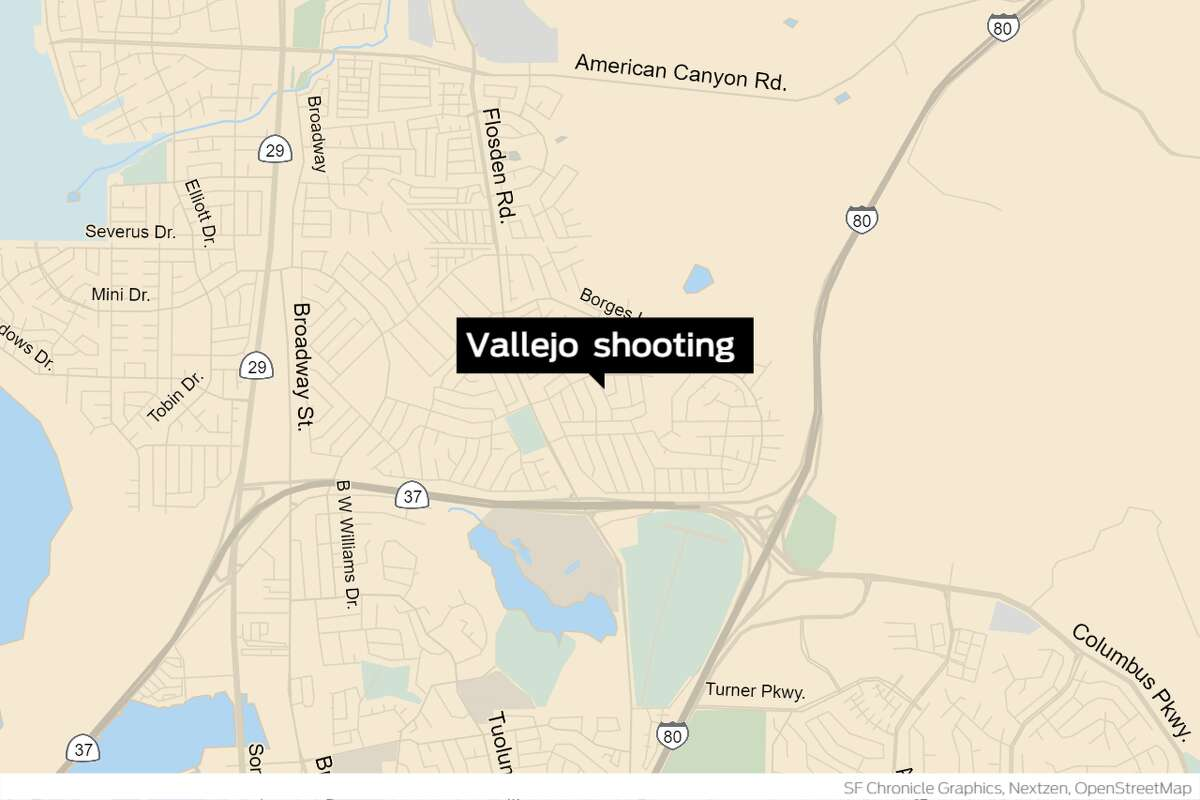 Two adults were killed in Vallejo after a group of shooters opened fire at a toddler's birthday party, wounding two other adults and a 10-year-old child.