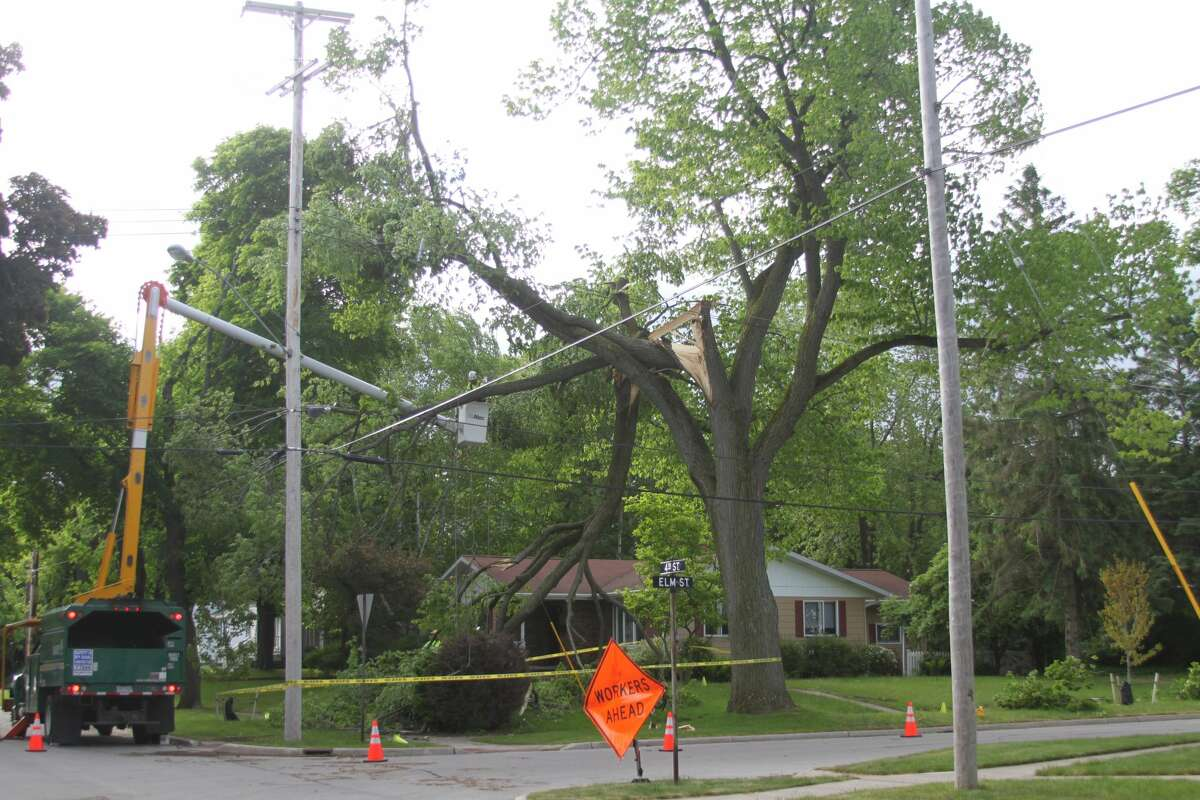 Davey Tree staff could be seen at the corner of Elm and Fourth streets at the sight of a damaged tree after Manistee area saw wind gusts up to 51 mph Wednesday morning.