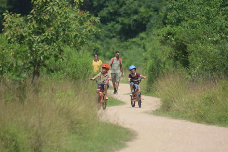 The Seabrook Hike and Bike Trail, with its lush vegetation in all directions, serves as a getaway to peacefulness.