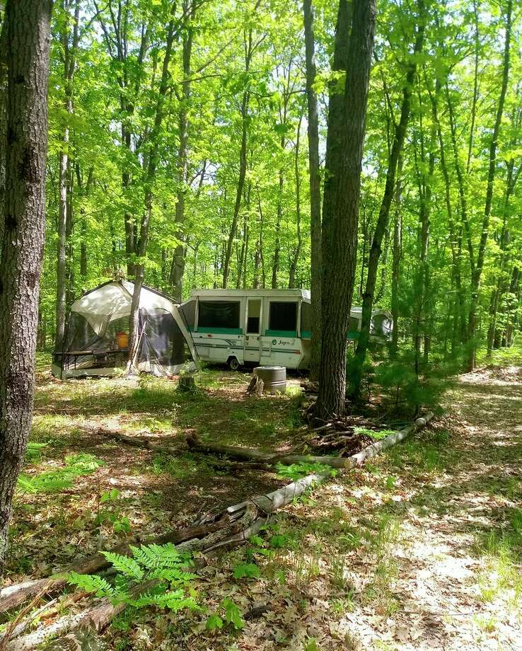 """Camp Happy Trees is a newcannabis-friendly primitive campground opening in Wellston this summer. The campground's introduction on its Facebook page describes it as being """"nestled amongst towering pine trees in the magnificent Manistee National Forest"""" and is20 acres with some hardwoods and some red pines near the corner of Hoxeyville and Fawn roads.(Courtesy photo)"""