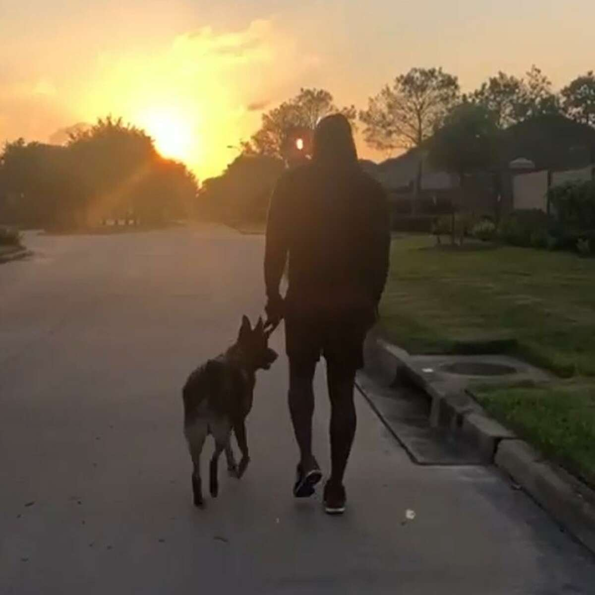 Whitney Mercilus and a four-legged companion participate in Easter Seals of Greater Houston's virtual Walk With Me fundraiser