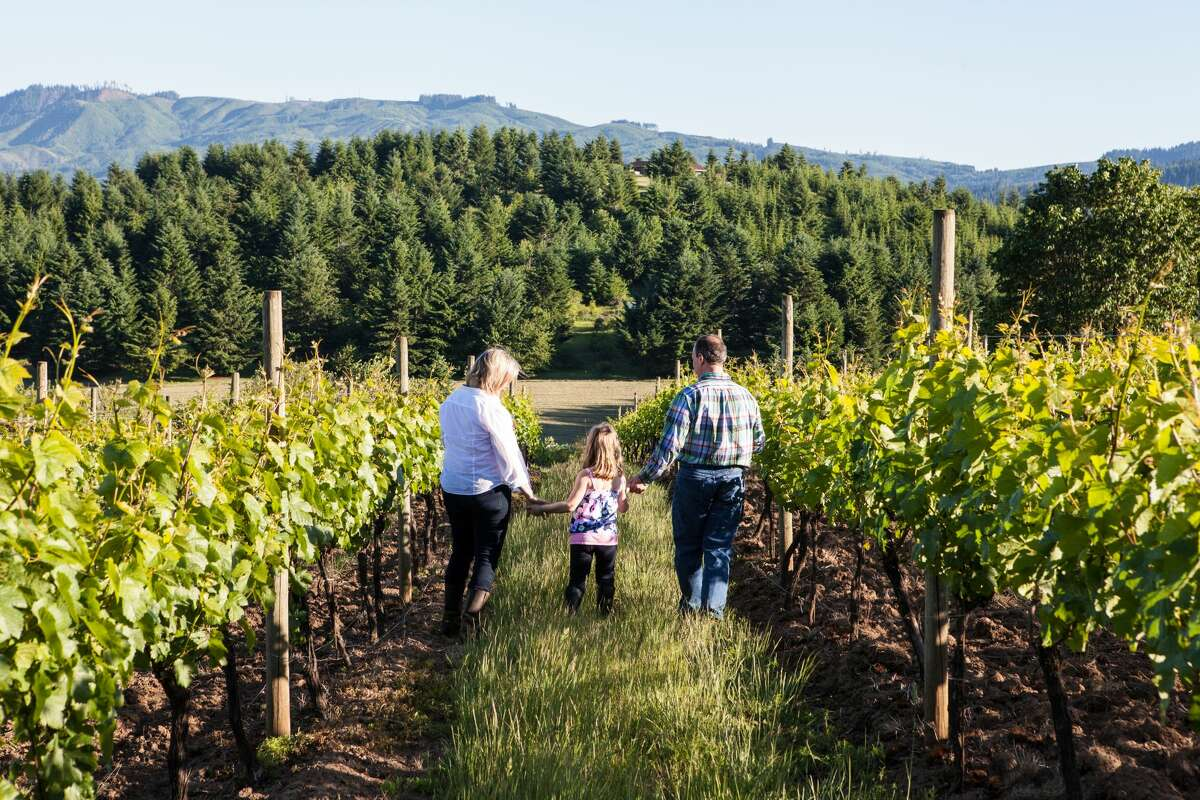 Be sure to save time for Raptor Ridge Winery, named for its location on a ridge in the Chehalem Mountains. Here guests will pair chef curated bites with Laurelwood-grown Estate Pinot and Grüner veltliner. Reservations are available for groups of up to 10 people. While in Oregon wine country, challenge your family to an adventurous outdoor experience at Tree to Tree Aerial Adventure Park. The aerial obstacle course is currently open, offering six self-guided courses set amid the trees. Located in Gaston, the aerial obstacle course will keep you on your toes with wobbly bridges, balance beams and tightropes. After a full day of sightseeing and vineyard tours, treat the family to a luxurious sleepover at McMenamins Grand Lodge, officially reopened and welcoming reservations. The lodge is known for its quirky vibe and palate pleasing on-site restaurants like Ironwork Grill, which on June 18 will be celebrating Oregon Cider Week.