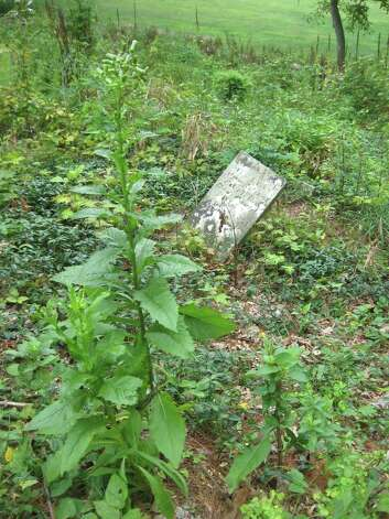 This grave, in need of support, is barely legible. Restoration work to the headstones themselves will take place next April. Photo: Tim Loh / Fairfield Citizen