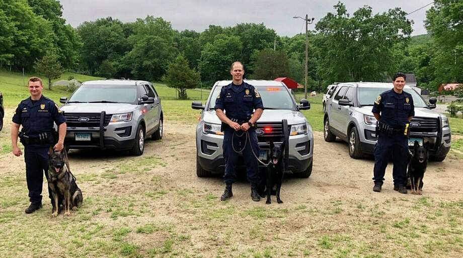 Seven Connecticut State Police canine teams graduated during a ceremony on Thursday, June 11, 2020. Photo: Contributed Photo / Connecticut State Police
