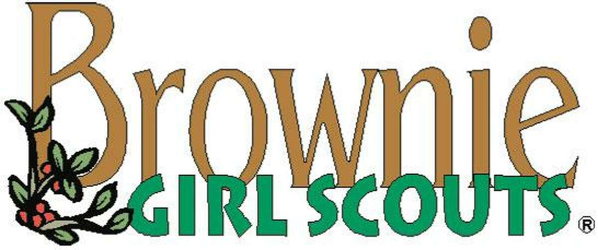 Wilton Brownie Troop 50734 thanks people for their service.