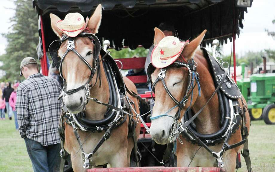 Organizers of Fall Family Days announced Friday they have canceled the annual event and the Thumb Octagon Barn Agricultural Museum will be closed until further notice due to the coronavirus pandemic. (Tribune File Photo)