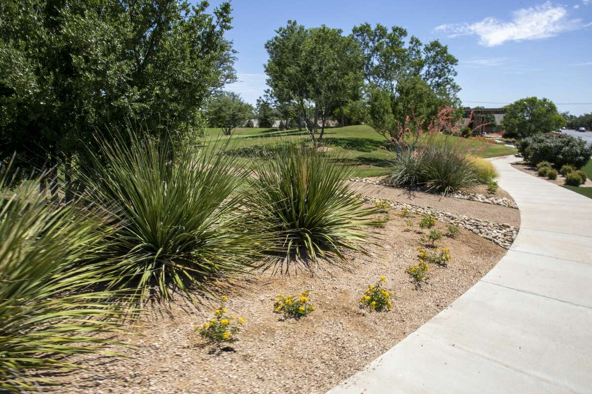 Fasken Oil and Ranch, as seen June 12, 2020, was awarded the Community Achievement Award from Keep Midland Beautiful for their use of native plants and landscape design at 6101 Holiday Hill Road.
