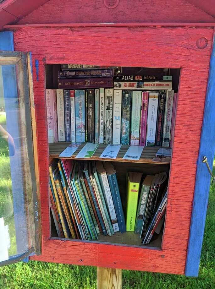 Shown is the Little Free Library that is located by the old Dickson School on the corner of Highbridge Road and Coates Highway in Brethren. (Courtesy photo)