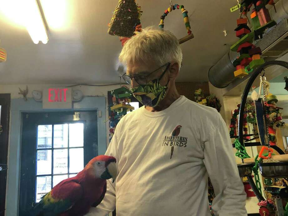 Longtime employee Gary Foster shows off Kiko, a scarlet macaw, at Adventures in Birds in Spring Branch Photo: Elliott Lapin / Staff Photo