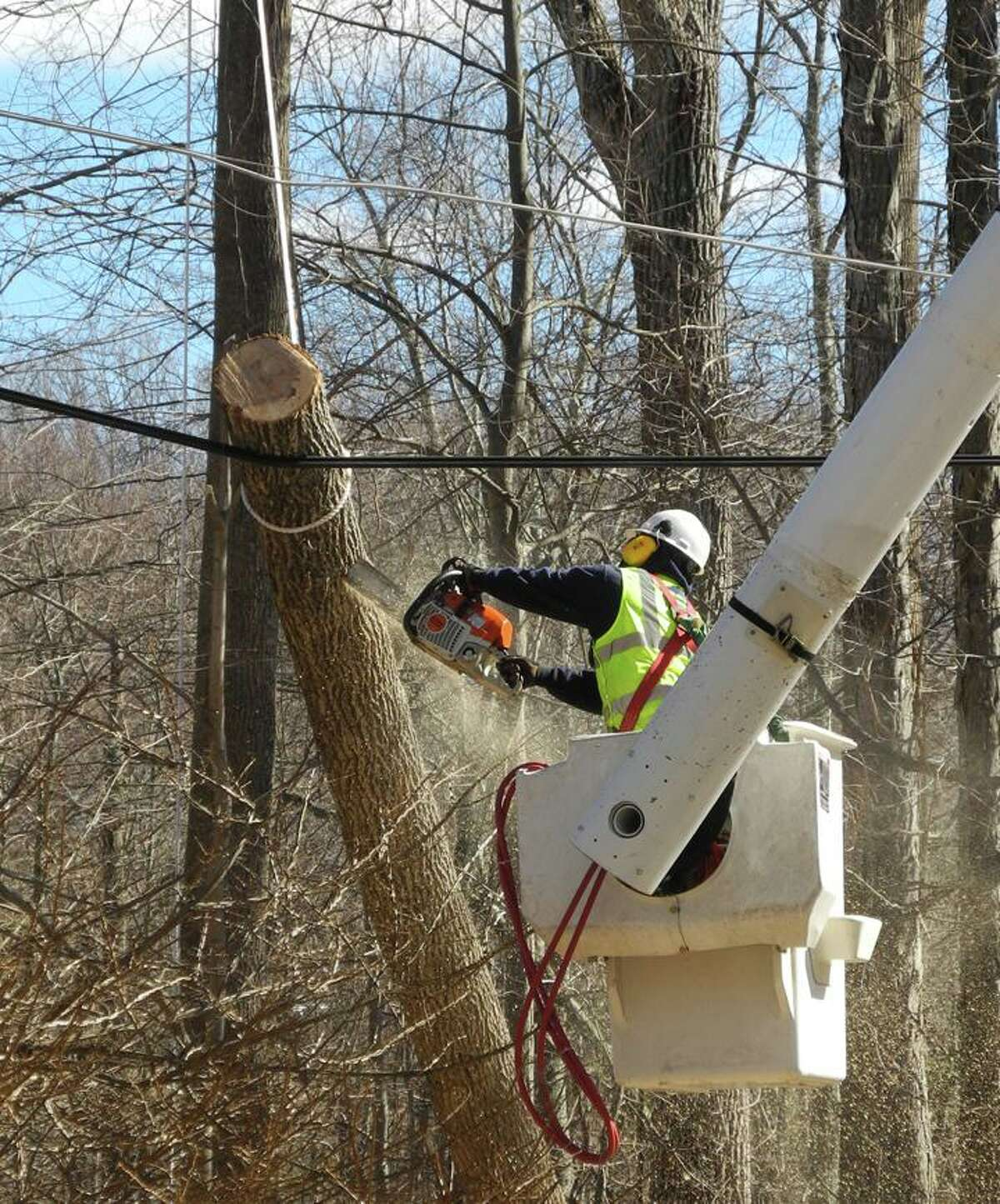 A worker sawed a tree limb that had fallen on a wire after a big storm in February, 2016.
