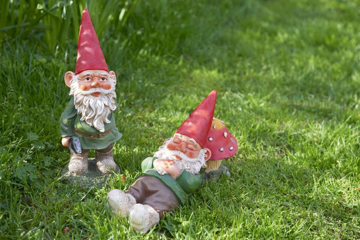 """""""No gnomes in front yard.""""-Andrew Brabham Young"""